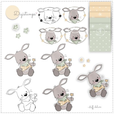 Digistamp Hase Max